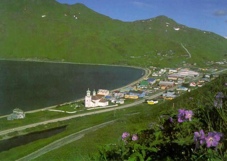 Aleutian Pribilof Islands Association Jobs