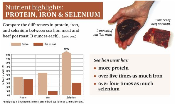 SEA LION-nutrient highlight protein iron selenium